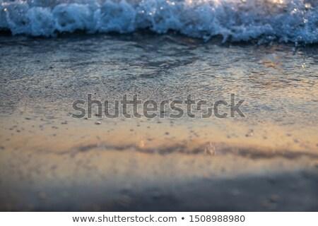 caribbean morning light beach wet sand reflection Stock photo © lunamarina