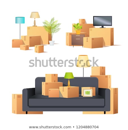 Move in New Apartment Carton Boxes Set Vector Stock photo © robuart