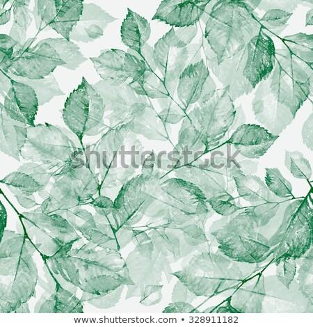 suluboya · yumuşak · yeşil · vektör - stok fotoğraf © bonnie_cocos