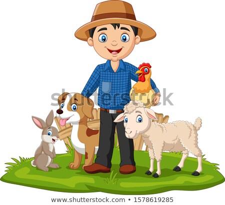 birka · űr · szöveg · állat · magányos · mezőgazdaság - stock fotó © robstock