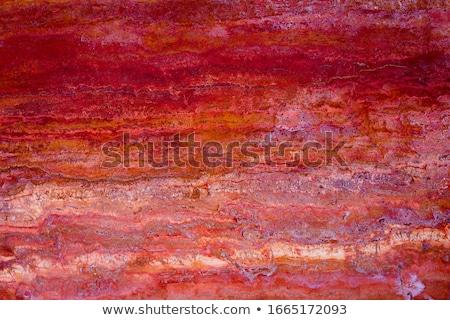 ピンク 具体的な みすぼらしい 先頭 表示 ストックフォト © furmanphoto