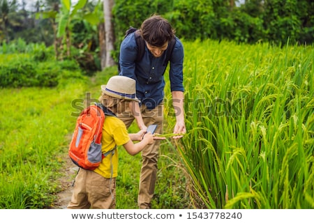 Dad and son identify plants using the application on a smartphone. augmented reality BANNER, LONG FO Stock photo © galitskaya