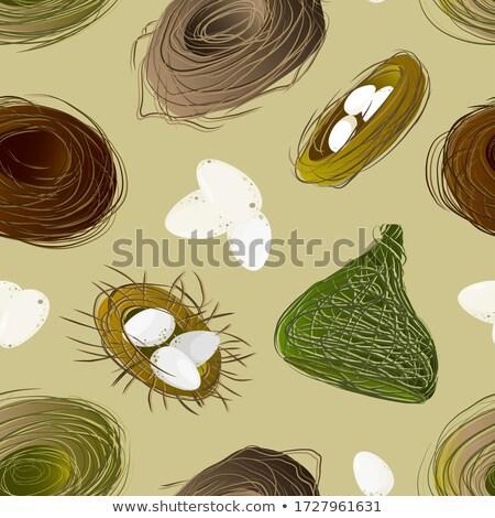 巣 セット 鶏 パターン ベクトル 手描き ストックフォト © netkov1