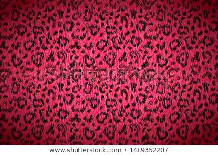 Rose cartoon Leopard peau détaillée Photo stock © evgeny89
