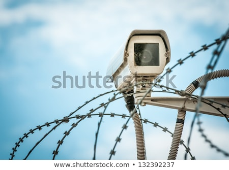barbed wire security fence close up and blue sky stock photo © latent