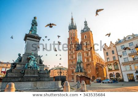 Bazilika krakow Polonya aziz tuğla Gotik Stok fotoğraf © borisb17