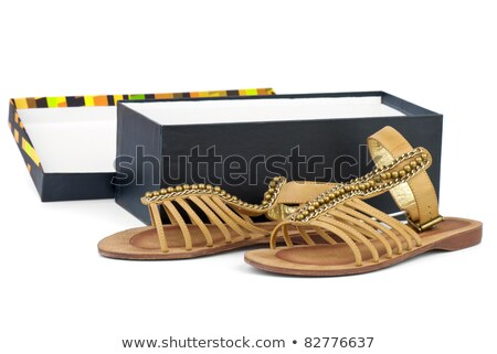 Par marrón cuero femenino sandalias Foto stock © digitalr