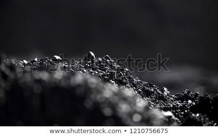 belt with black coal Stock photo © compuinfoto