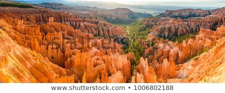 Bryce landscape Stock photo © Hofmeester