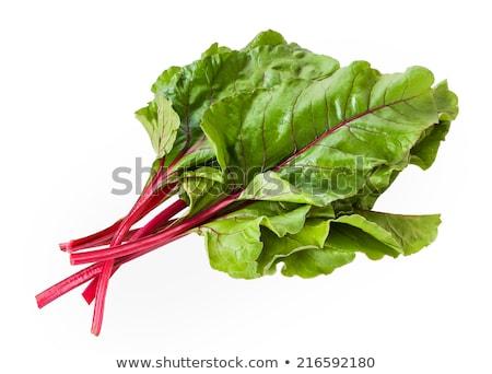 緑 植物 庭園 フル 食品 葉 ストックフォト © pixelsnap