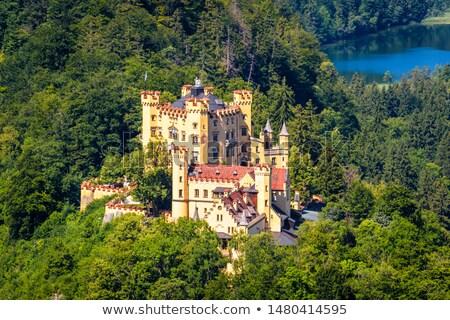 kasteel · Duitsland · mooie · zomer · zonsondergang - stockfoto © magann