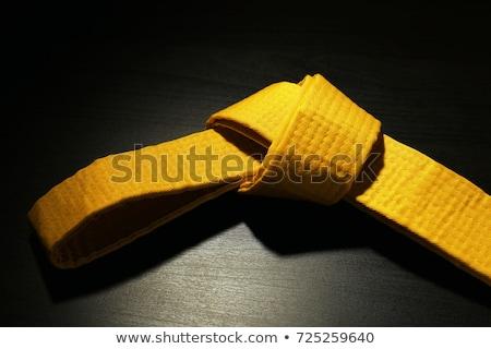 Yellow Belt Stock photo © zhekos