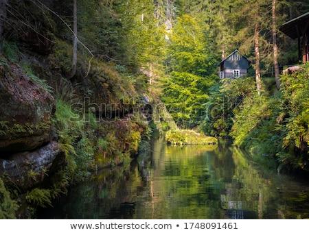 River Kamenice in Czech Switzerland Stock photo © ondrej83