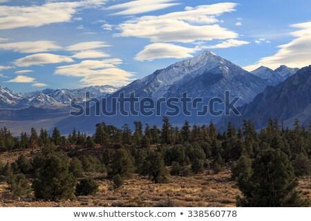 Stock photo: Mount Tom Summit Panorama