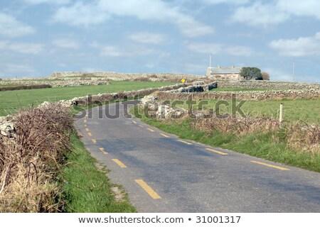 vidék · sáv · napfelkelte · Yorkshire · égbolt · fa - stock fotó © morrbyte