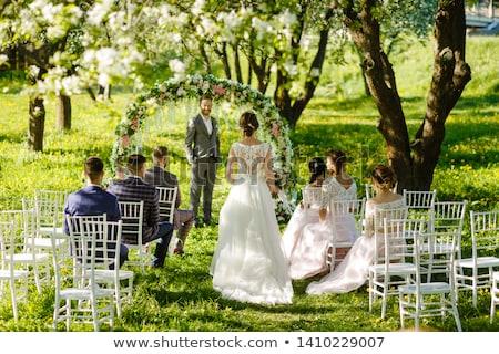 Cerimonia di nozze esterna wedding party costruzione alberi Foto d'archivio © amok