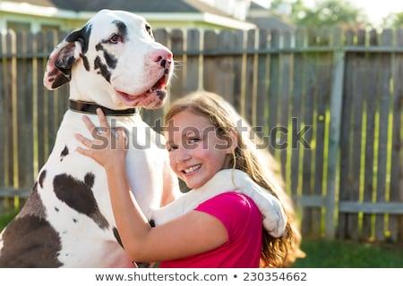 great dane stand up on kid girl shoulders playing stock photo © lunamarina