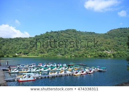 Göl Tayvan ünlü cazibe orman dağ Stok fotoğraf © tang90246