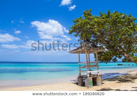 Caribbean strand noordelijk kust Jamaica rivier Stockfoto © master1305