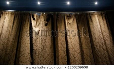 Abstract gouden gordijn plafond ontwerp achtergrond Stockfoto © FrameAngel