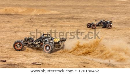 RC buggy in the desert stock photo © OleksandrO