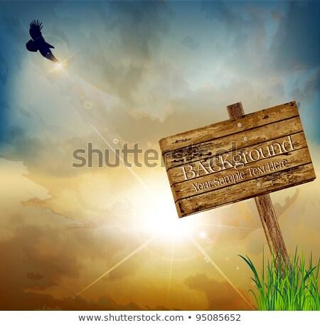 Cartoon · halcón · signo · pie · madera - foto stock © bluering