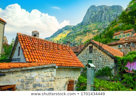 Old buildings with red-orange roofs in Kotor in Montenegro Stock photo © bezikus