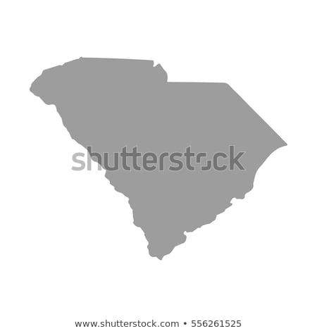 Stok fotoğraf: Harita · Güney · Carolina · gri · beyaz · doku · dünya