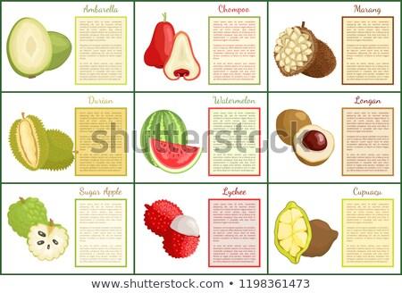 exótico · jugoso · frutas · vector · anunciante · texto - foto stock © robuart