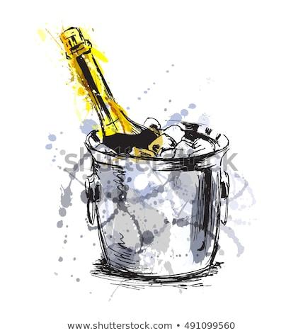 Champán botella hielo color vector frío Foto stock © pikepicture