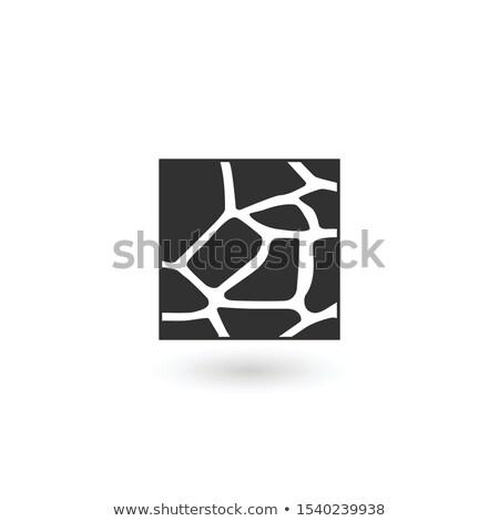 Giraffe huid vierkante logo sjabloon geïsoleerd Stockfoto © kyryloff