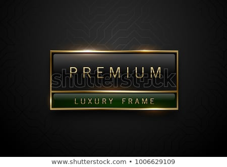 Premium black green label with golden frame on black geometric background golden lines. Dark luxury  Stock photo © Iaroslava