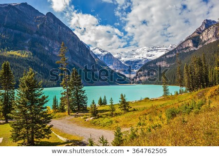 lake louise area in canada stock photo © skylight