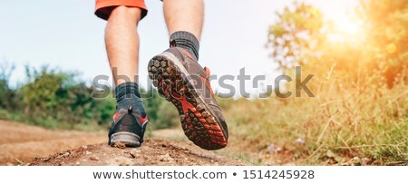 Sole of hiking boot Stock photo © broker