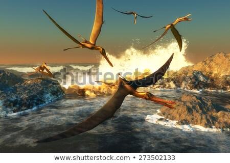 Dinozor uçuş Brezilya 3d render Stok fotoğraf © AlienCat