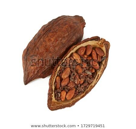 cacao · fagioli · greggio · donna - foto d'archivio © rob_stark