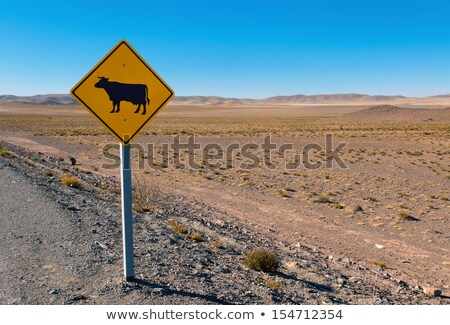 cow sign in the andes stock photo © elxeneize