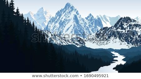 Snow mountain peak and tree Stock photo © zzve