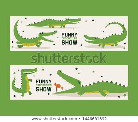 Постоянный крокодила Cartoon иллюстрация вектора Сток-фото © derocz