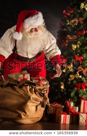 детей · открытие · Рождества · представляет · два · мальчика - Сток-фото © hasloo