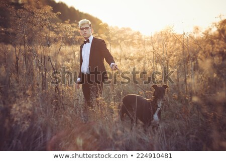 Young attractive man in suit and tie with a greyhound dog in aut Stock photo © vlad_star
