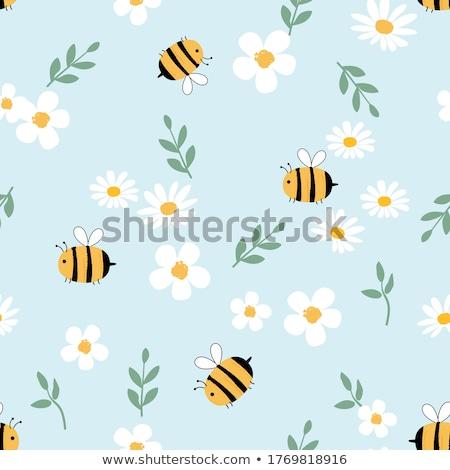 Groene insecten daisy bloemen Stockfoto © AlessandroZocc