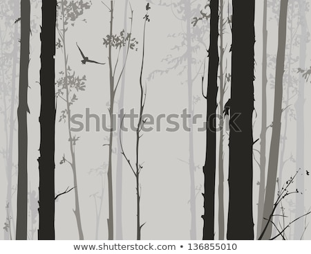 two flying owls in the forest stock photo © jarin13