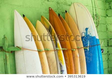 surf boards in a row on the beach Stock photo © morrbyte