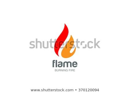 Fogo chama logotipo modelo teia poder Foto stock © Ggs