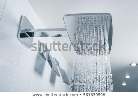 Kąpieli dotknij prysznic łazienka domu Zdjęcia stock © wavebreak_media