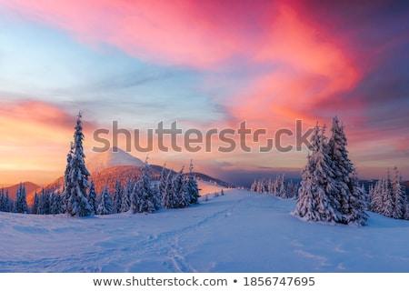 Majestueux matin colline lumière du soleil pittoresque Photo stock © Leonidtit