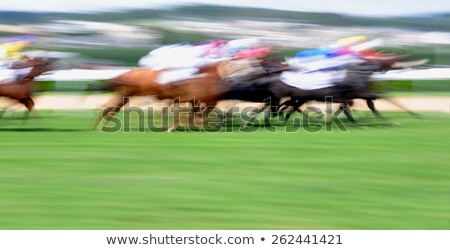 motion blur on race course Stock photo © ssuaphoto