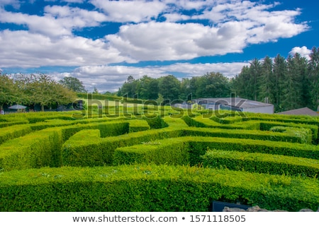 platteland · kasteel · naar · beneden · te · kijken · bomen - stockfoto © smartin69