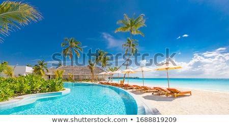 lüks · plaj · başvurmak · beyaz · havuz - stok fotoğraf © Anna_Om
